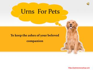 Varieties of Urns for Pets