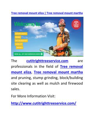 Tree removal mount eliza | Tree removal mount martha