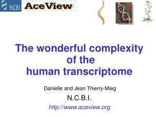 The wonderful complexity  of the  human transcriptome