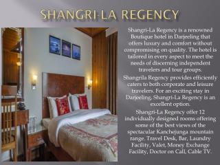 Hotel Shamgri La Regency