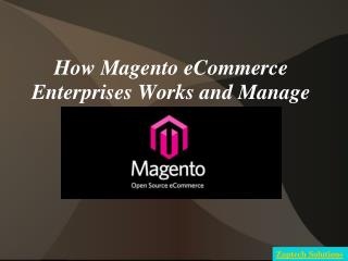How Magento eCommerce Enterprises Works and Manage