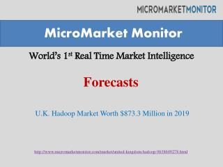 U.K. Hadoop market is expected to grow $873.3 million in 2019 at a CAGR of 54.9%