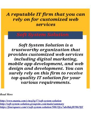 A reputable IT firm that you can rely on for customized web services  Soft System Solution