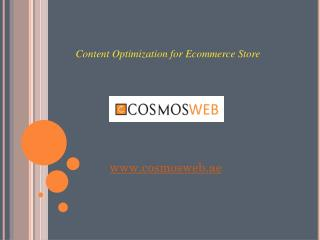 Content Optimization Tips for Ecommerce Store