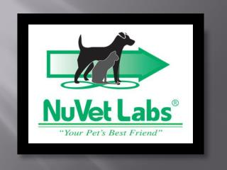 NuVet Reviews|Doggie Playground: Maintaining a Pet-Friendly Yard