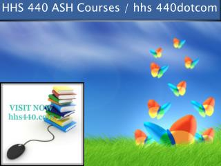 HHS 440 professional tutor / hhs 440dotcom