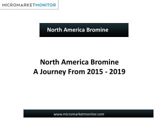 North America Bromine Market-Trends & Forecasts 2019