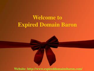 Expired Domains Baron