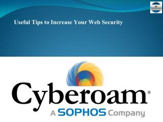 Useful Tips to Increase Your Web Security