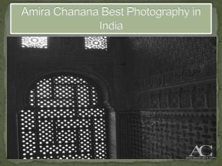Amira Chanana Best Photography in India - Best Wildlife Photographer in India