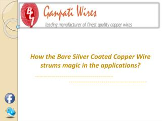 Bare Silver Coated Copper Wires