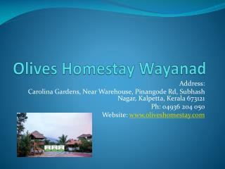 Olives Luxury Homestay in Wayanad