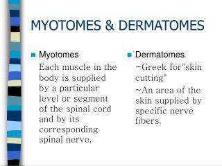 MYOTOMES & DERMATOMES