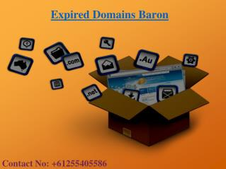 Expired Domains List  | Expired Domain Names | Expired Domains Baron