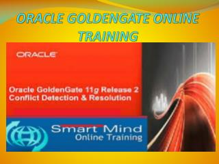The Best Oracle goldengate online training in India, USA, UK.