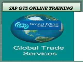 The Best SAP GTS online training institute in India, USA, UK