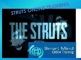 The Best Struts Online Training Program in India, USA, UK.