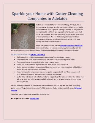 Sparkle your Home with Gutter Cleaning Companies in Adelaide
