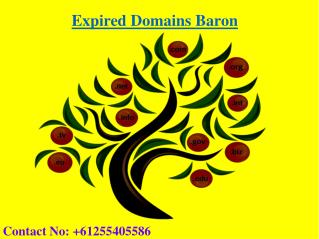 How to Buy Expired Domain | Expired Domains List | Expired Domain Baron