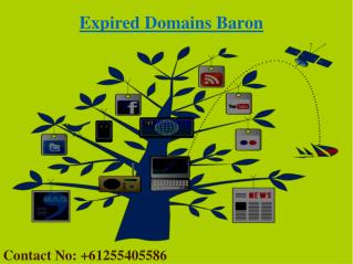 Buy Expired Domains | Expired Domains List | Expired Domains Baron