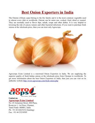 Best Onion Exporters in India