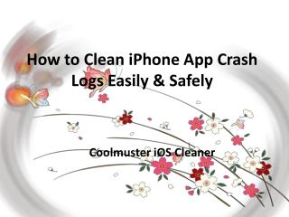 How to Clean iPhone App Crash Logs Easily & Safely?