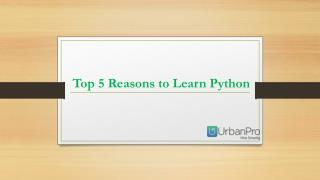 Top 5 Reasons to Learn Python