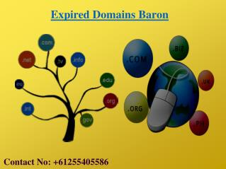 High PR Expired Domain Names Are Avalible At EXPIRED DOMAINS BARON