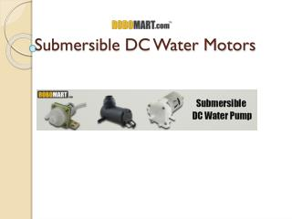 Submersible DC Water Pump | Robomart