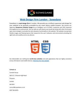 Web Design Firm London - Sowedane