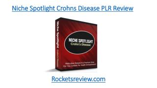 Niche Spotlight Crohns Disease PLR Review