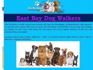 East Bay Dog Walkers