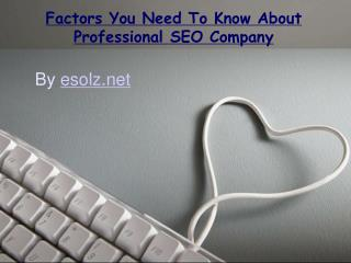 Aspects of a professional SEO company