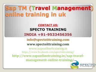 Sap TM travel management online training in uk