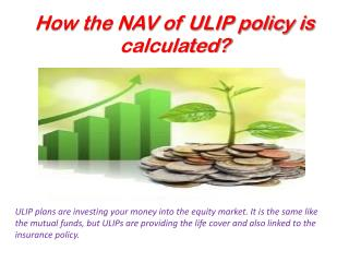 How The NAV Of ULIP Policy Is Calculated?