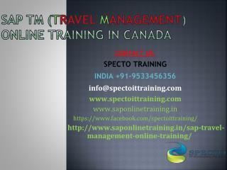 Sap TM travel management online training in canada
