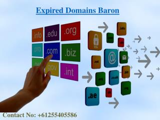 Find  And Buy Expired Domains At EXPIRED DOMAINS BARON