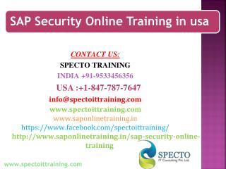 sap security online training in usa
