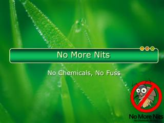 No More Nits: Get Relief Form Lice and Nits