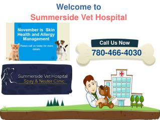 Edmonton Animal Hospital - Pets Skin Health and Allergy Treatment