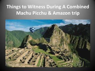 Things to Witness During A Combined Machu Picchu & Amazon trip