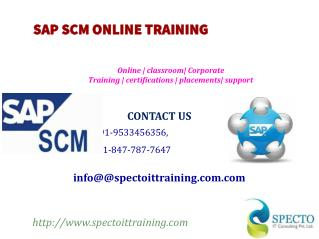 SAP SCM ONLINE TRAINING IN SOUTH AFRICA