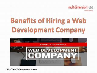 Benefits of Hiring a Web Development Company