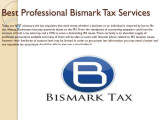 Best Professional Bismark Tax Services