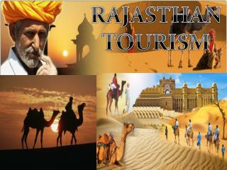 Things To Do In Rajasthan Tour