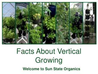 Facts about Vertical Growing