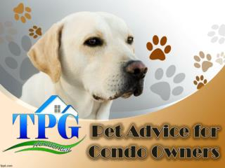 Pet Advice for Condo Owners