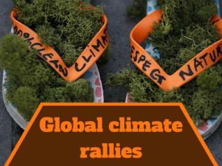 Global climate rallies