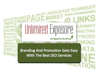Branding and promotion gets easy with the best search engine optimization services