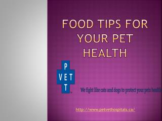 Food Tips For Your Pet Health